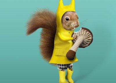Squirrel_Titta_Maten-1
