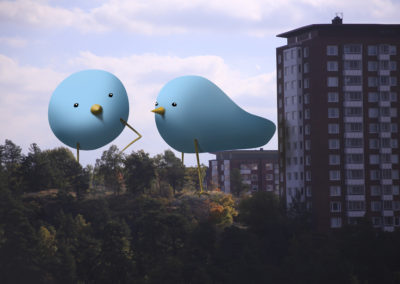 fåglar på berget